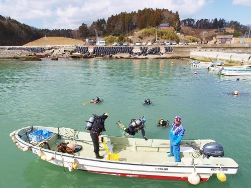 ボートチームは、浅瀬の湾内を捜索。
