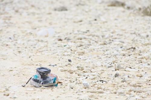 漂流した水中カメラ