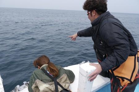 途中、ザキさんが「ほらほら、あそこにダンゴウオがいっぱい!」。とにかくダンゴウオがいっぱいると聞かされていたモデルのルコさんも思わず「え~! どこどこ!」と真剣に海を見つめる。いやいや……笑