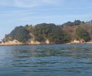 前の記事: 「地元の波は自分の鼓動と同じ」 ~地元、愛媛・今治の海でダイ