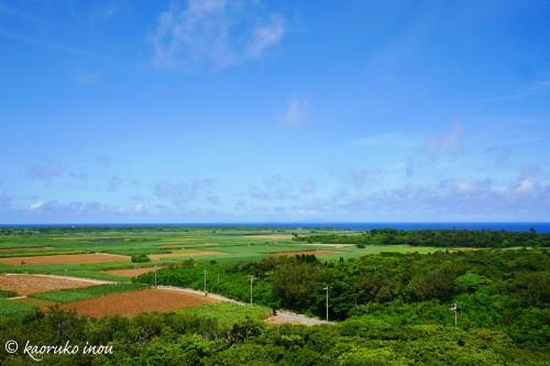 反対側も田んぼと畑と海の景色。のどかです