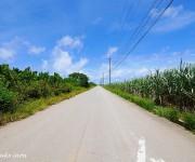 前の記事: 本当は紹介したくない沖縄最後の秘境・多良間島