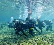 前の記事: ダイバーに人気の沖縄・北谷(ちゃたん)に水中ポストが誕生!