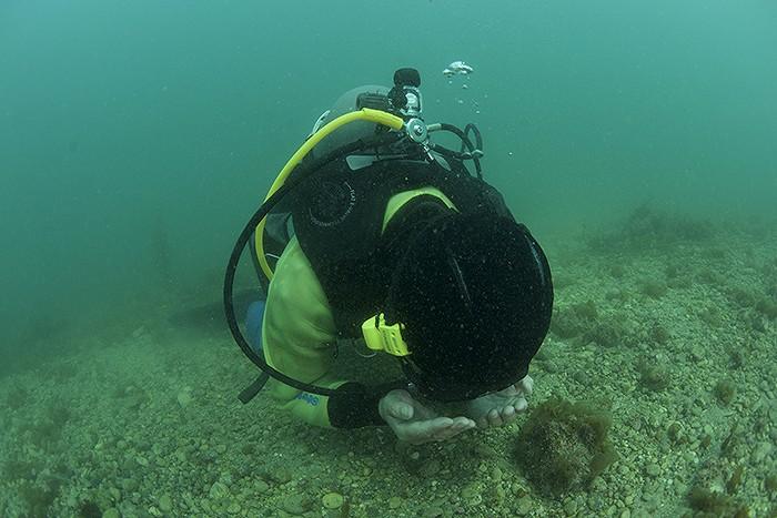 ガチンコ検証! ロゴシーズを使って、水中で迷子になったダイバーを探してみた