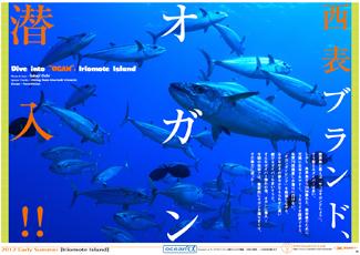 iriomote_ogan_pdf