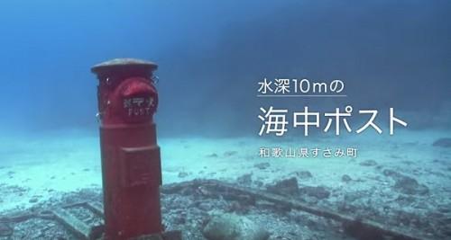海中ポスト(提供:クラブノアすさみ)