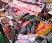 次の記事: 最高級魚だと思ったら有毒魚だった!? プロでも間違う、バラハ