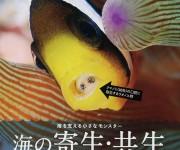 次の記事: 海の寄生虫を愛するパラサイトラバーズの聖書!? 「海の寄生・