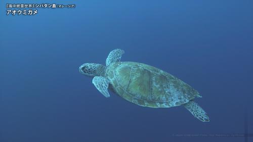 海中絶景世界