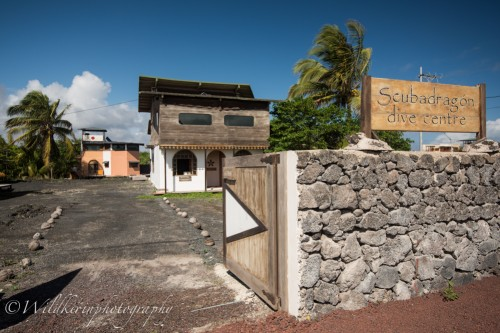 Scubadragon Dive Center & Tres Palmas Eco Lodge