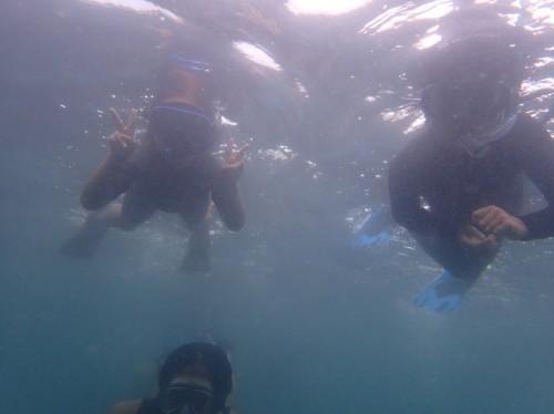 水中の写真は全て、前回の開催時のものです。