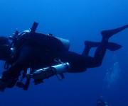 次の記事: ソロ(単独)潜水はバディダイビングよりも危険なのか? ~JC