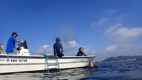 海洋スキンダイビング講習in葉山、第2弾を10/30に開催!