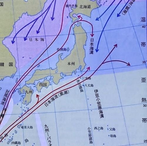 紀伊半島先端に位置する串本は本州で唯一亜熱帯域に含まれている  ※日本の海水魚(山と渓谷社) 海洋生物の分布からみた気候帯区分より
