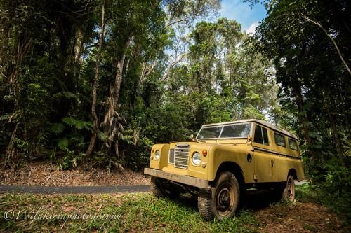バロンフォールズの熱帯雨林に突如現れたかっこいジープ