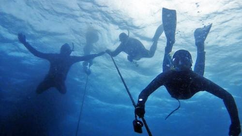 10月30日に開催したばかりの葉山海洋講習の様子