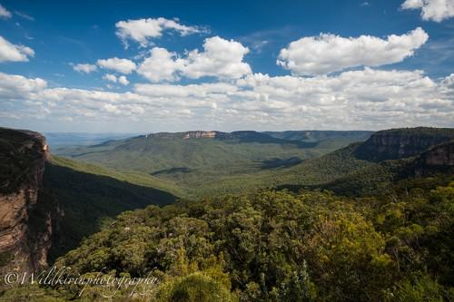 ブルーマウンテンズ国立公園の展望台からの眺め