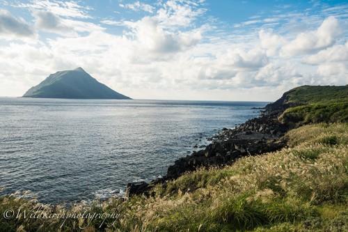 八丈小島をバックに溶岩の上に芽生えた緑が引き立つ八丈島ならではの景色