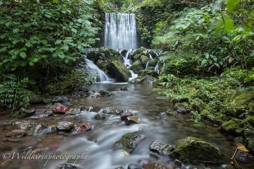 小川の上流にはマイナスイオンたっぷりの滝が