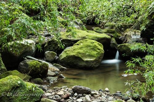 03_09Hachijyo-Oceana-Landscape-40_1