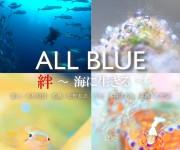 前の記事: ガイド会のメンバーによる写真展「ALL BLUE 絆~海に生