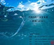 次の記事: 静岡への恋心を写真にのせて 新井拓哉「大社の杜みしま写真展〜