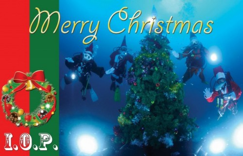 伊豆海洋公園水中クリスマスツリー