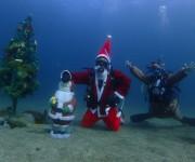 次の記事: ダイバーだけが楽しめる! 水中クリスマスツリーが設置してある