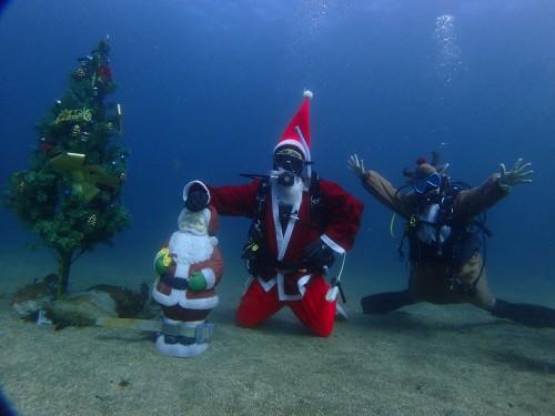 黄金崎水中クリスマスツリー