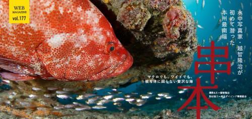 https://oceana.ne.jp/webmagazine/201612_kushimoto
