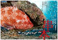 水中写真家・越智隆治が初めて潜った本州最南端「串本」