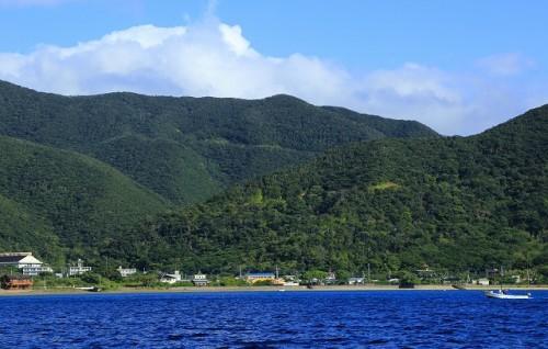 手つかずの大自然が残る奄美大島・南部