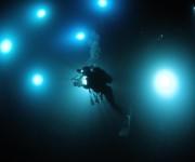 次の記事: 【募集中】有識者15名の安全ダイビングの提言 ~JCUEフォ