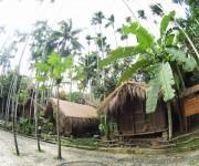 次の記事: オーシャナ・ダイビングリゾート「ガワ」がパプアニューギニアに