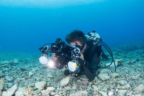 新しいRG-BLUEの最新ライトSystem03で真剣に撮影をする越智カメラマン