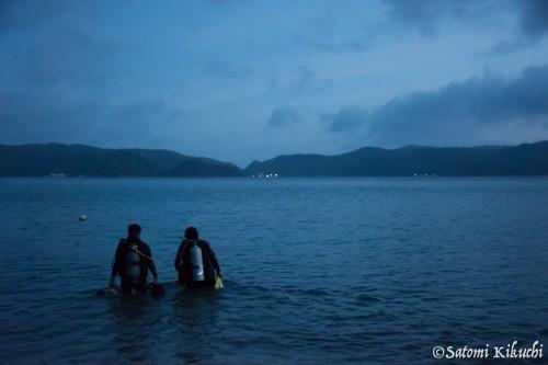 海が目の前なので、ナイトダイブも行きやすい!