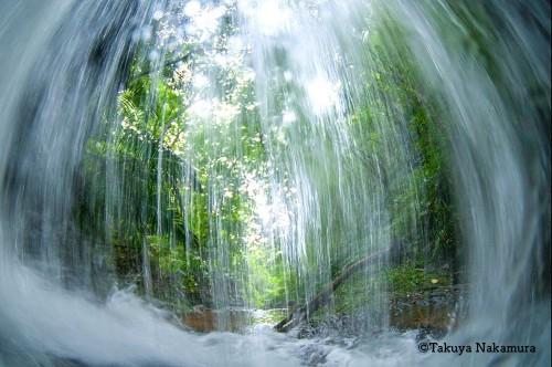 水の流れが神秘的に感じますね。こちらも辺野古での1枚です。