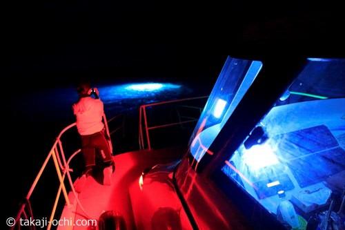 海中にいくつもの水中ライトが設置される