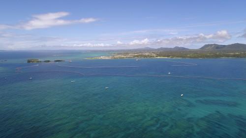 空から見る辺野古・大浦湾。湾の中心部にも広大なリーフが広がっていることがわかる。