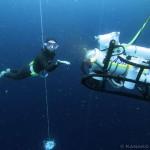 水中の岡本選手と「ROV」(写真撮影:永嶋奏子)