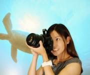 前の記事: 水中カメラマンになりたい! 仕事を辞めて、オーストラリアに潜
