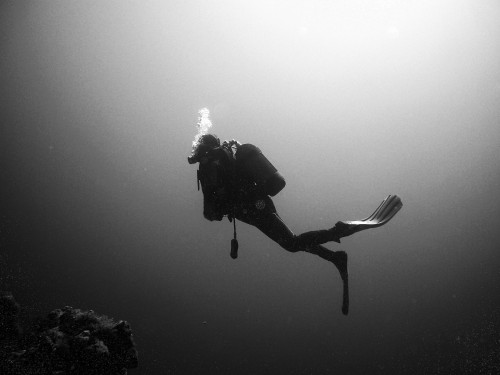divers-378222_1920