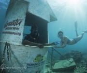 次の記事: ポートビラからデイトリップ! 世界唯一の海底郵便局から手紙を