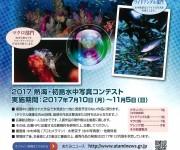 前の記事: ダイバーに人気の海! 熱海・初島水中写真コンテスト開催中 【