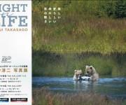 次の記事: 自然写真家・高砂淳二さん写真展「LIGHT on LIFE」