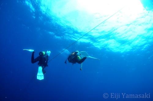 アンカーロープをつたい暗い海底を目指す
