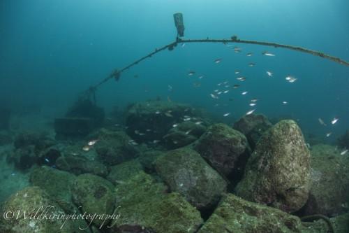 Fukuura Underwater Complete_15
