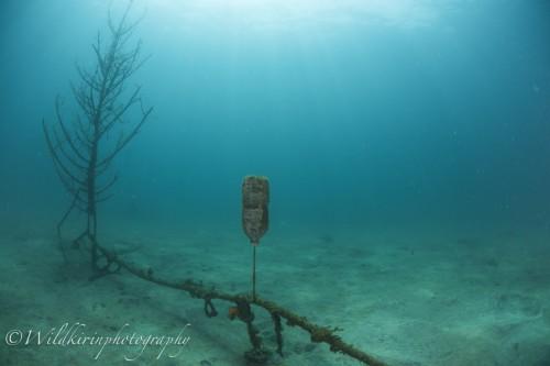 Fukuura Underwater Complete_17