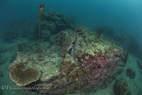 Fukuura Underwater Complete_48