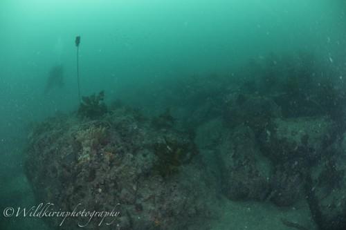 Ishibashi Underwater Complete_27
